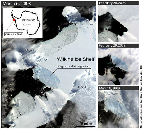 wilkins_ice_shelf.jpg