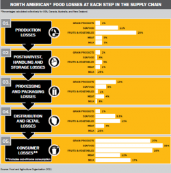 Food Waste 'Causes Losses Throughout the Supply Chain'