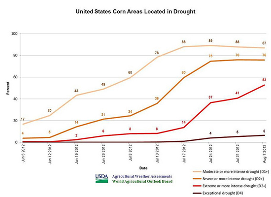 usda corn crop graphic