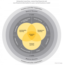 Ernst & Young Outlines Steps to Integrated Reporting
