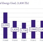 Bacardi report total energy