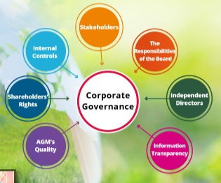 twse corporate governance