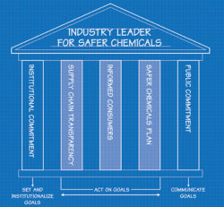 5 Steps to Safer Chemicals in Products