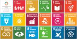 Sustainable Development Goals: Why Business Should Care
