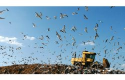 Waste Management to Fuel Trucks from Landfill Methane