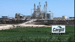 Cargill Says Its Sustainability Efforts Are a Model for Others and Are Good Business