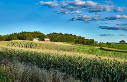 Monsanto Cuts GHG Emissions, Moves Closer to Carbon Neutrality