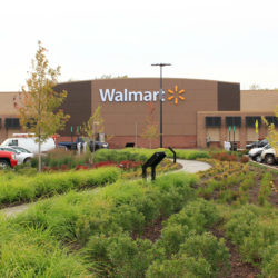 Big Climate Goals Can Align with Positive Financial Outcomes: Q&A with Walmart's Joby Carlson