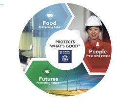 Sustainable Sourcing a Key Pillar for Prosperity, Says Tetra Pak