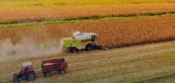 Farmers Must Get from Farm to Fork Faster; IoT Will Facilitate