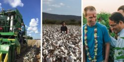 Target Joins Ranks of Retailers Sourcing Sustainable Cotton – But What Does That Really Mean?