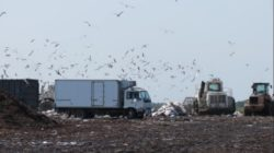 Landfill or Sustainable Business Park? Michigan County Considers the Question